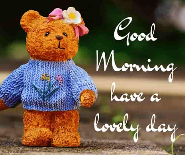 good morning with teddy have a lovely day