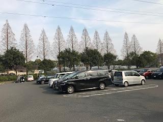 【親子旅遊】名古屋 | 戶田川綠地公園(東海地區最大木製遊樂設施+空中腳踏車)*多圖