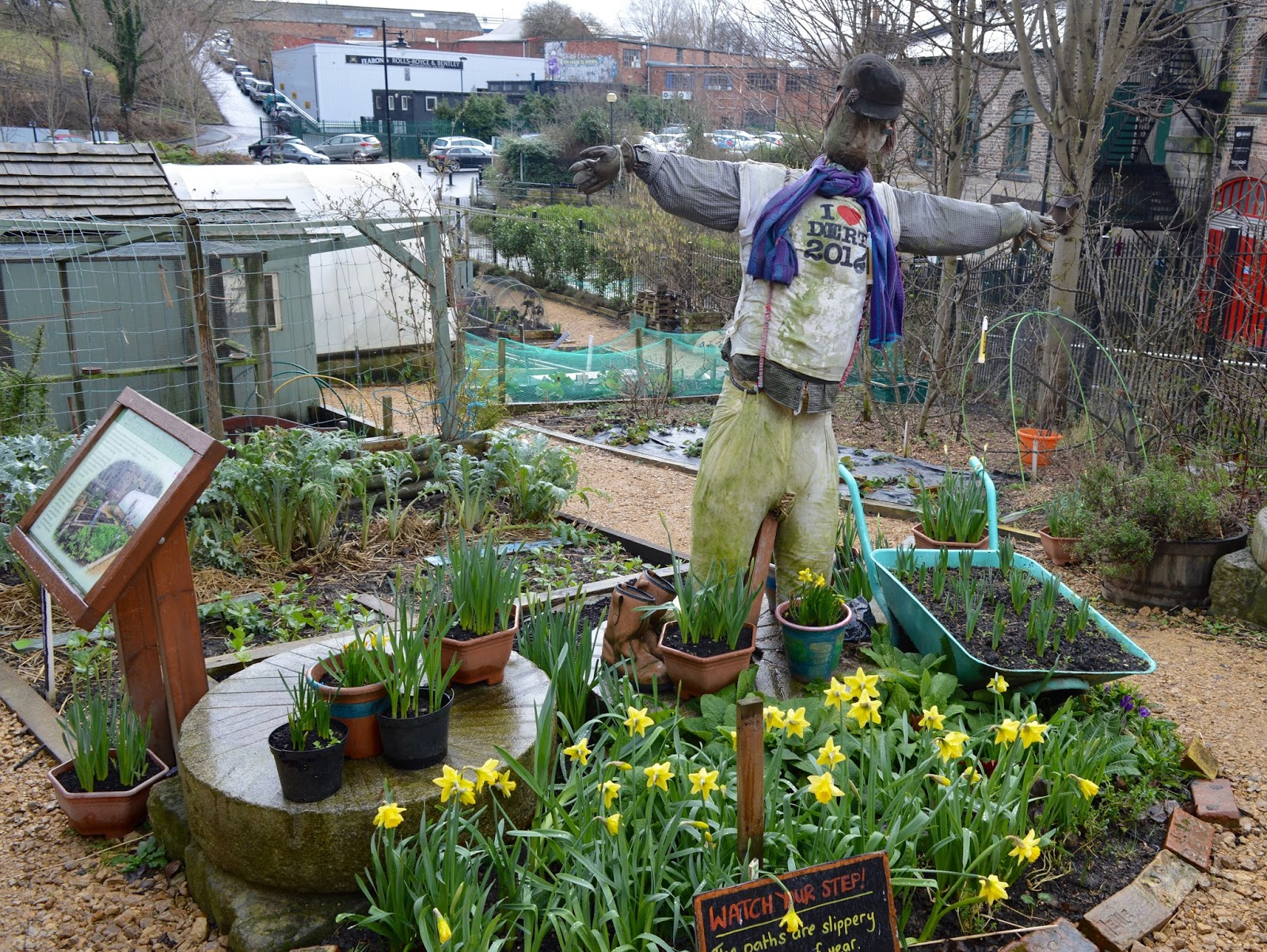 Ouseburn Farm Newcastle | A FREE Place to Take the Kids - scarecrow and daffodils