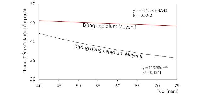 Lepidium Meyenii giữ được sức khỏe ổn định và bền lâu với thời gian