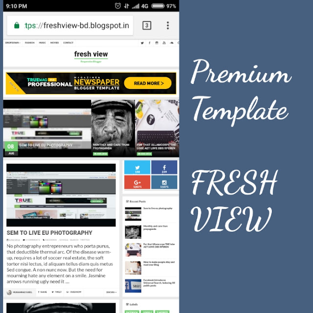 fresh view blogger template image