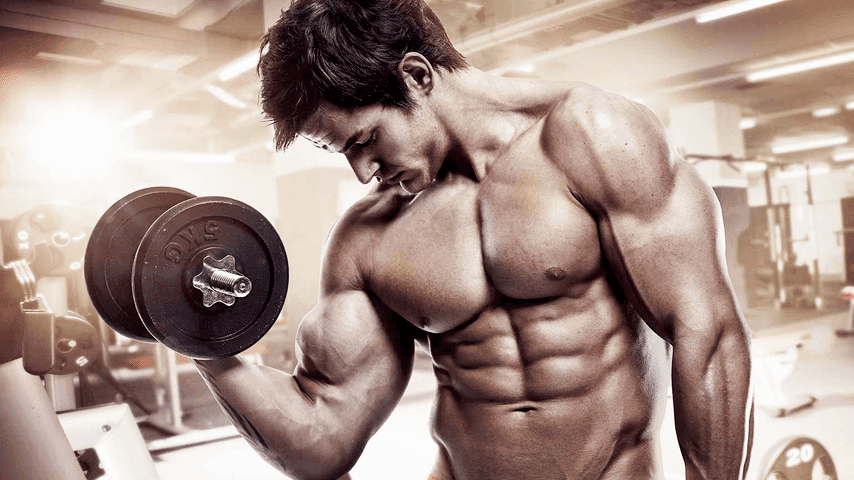 5 Tips to Body Building For You