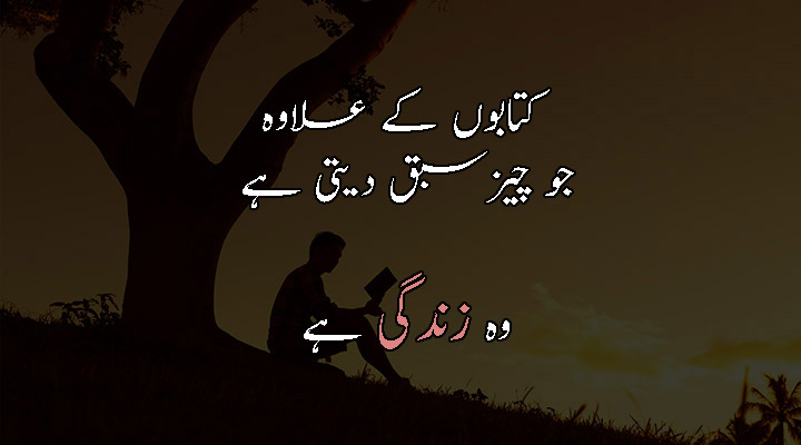 Life Quotes In Urdu Pic Shayari