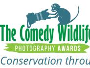 Foto Pemenang Lomba Foto Komedi Satwa Liar 2017