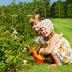 Κηπουρική με τα παιδιά