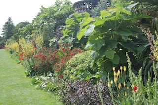 Tropical border at Harewood House