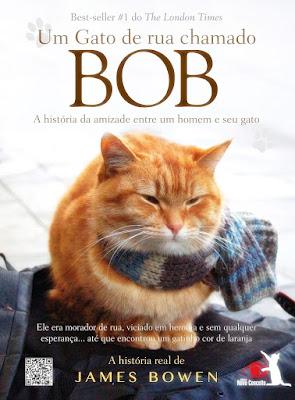 Um gato livro