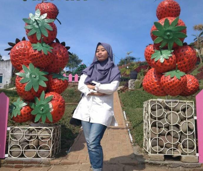 Rumah Strawberry di kemiling