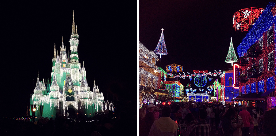 Walt Disney World Christmas Lights
