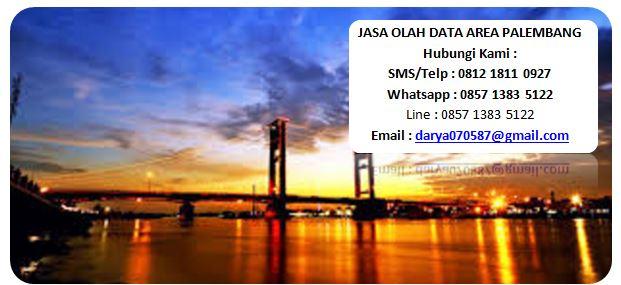 jasa+olah+data+palembang