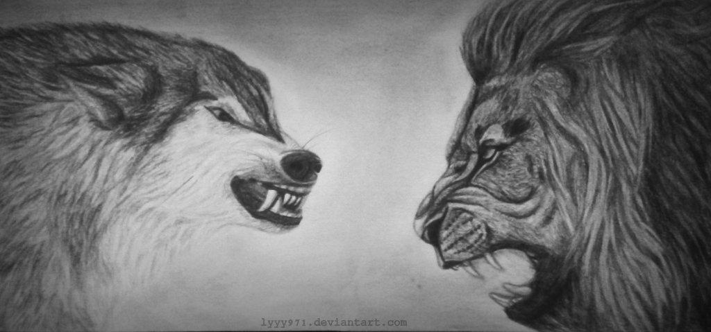 Lion vs Wolf: W...