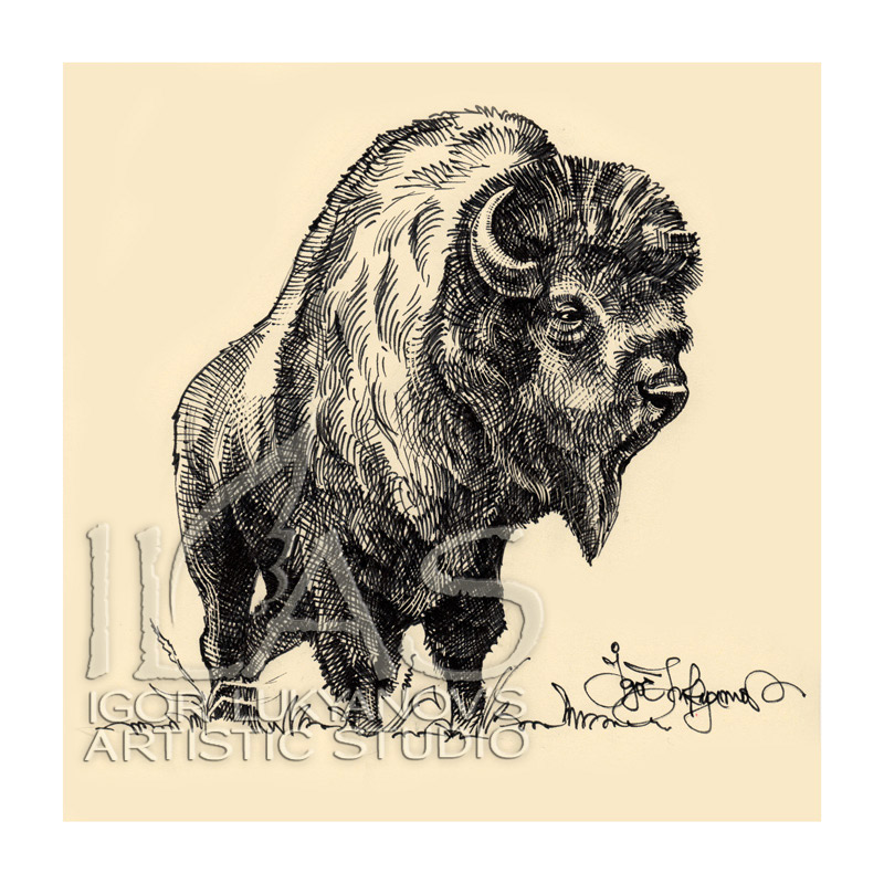 77ee5cec0 Igor Lukyanov - Graphic Artist | Illustrator | Portraitist: Bison ...