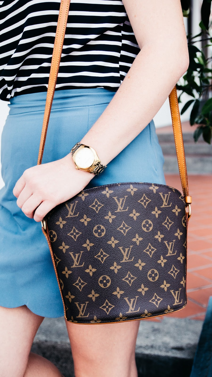 Louis Vuitton Purse | Global Fashion Gal