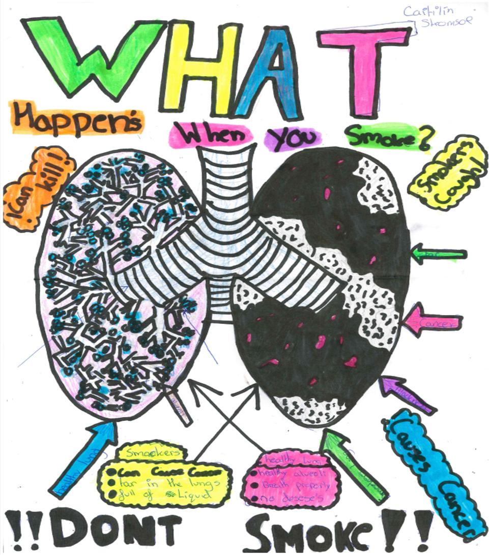 cobh scientist wellbeing week posters