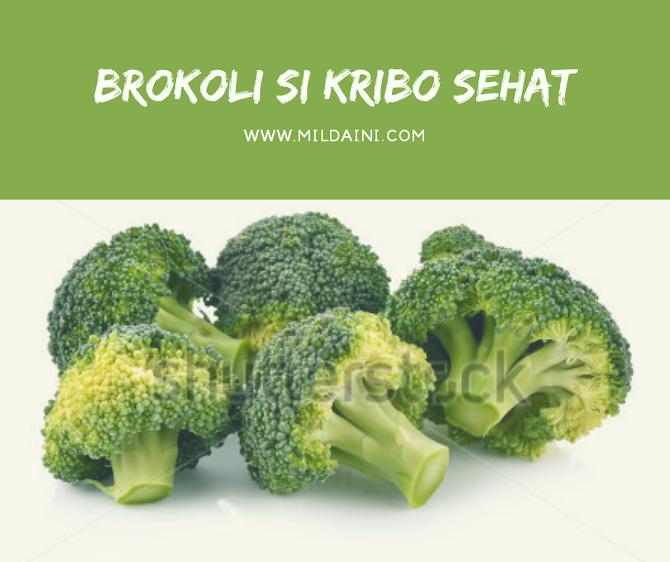Brokoli, Sayur Sehat Untuk Diet Cantik