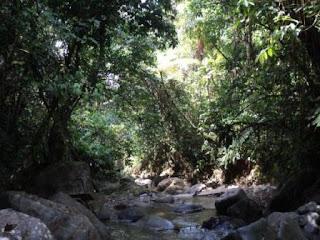 Kenampakan Penampang Sungai Daerah Penelitian