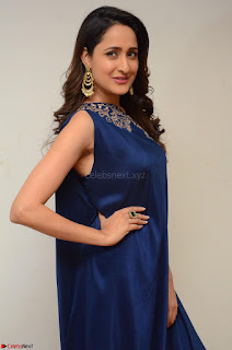 Pragya Jaiswal in beautiful Blue Gown Spicy Latest Pics February 2017 042.JPG