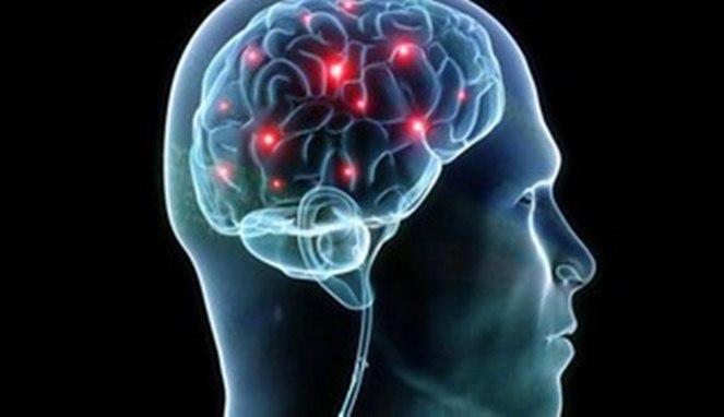5 Makanan Ini Bisa Buat Otak Tambah Cerdas
