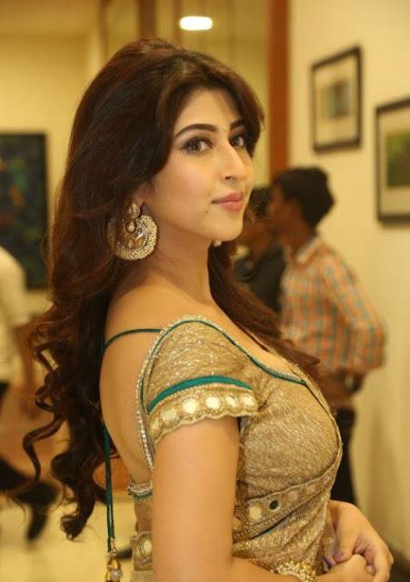 Sonarika Bhadoia saree stills