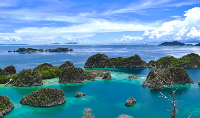 20 Top Rated Tourist Attractions in Indonesia Raja Ampat