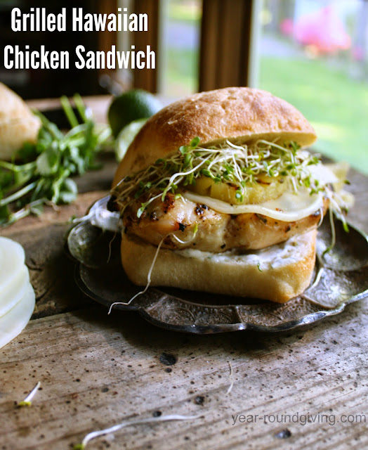 Grilled Hawaiian Chicken Sandwich