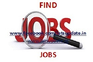 Job opening of Specialist Officer in Indian Bank., letsupdate, jobs, bank jobs,