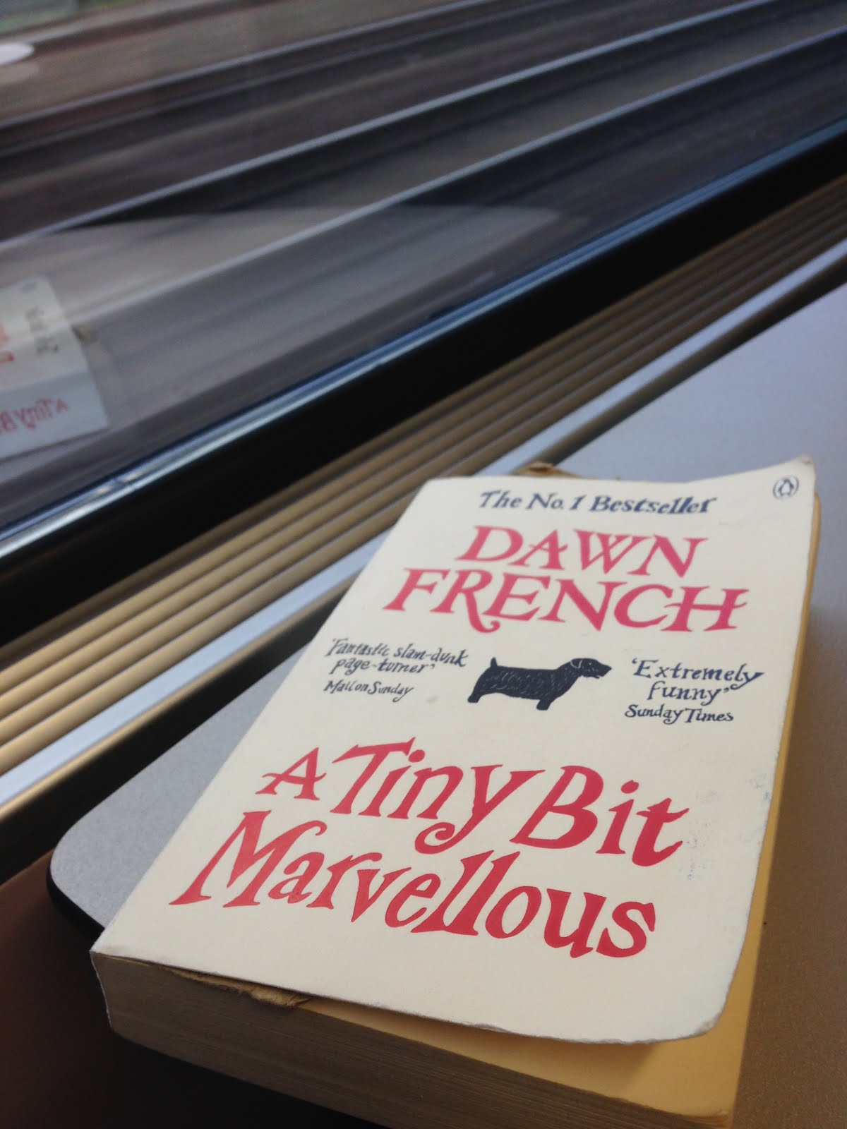 Ravacholle Lifestyle Blog | A Tiny Bit Marvelous by Dawn French Book Review book cover sncb train reading book review