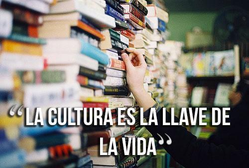 frases cortas de cultura