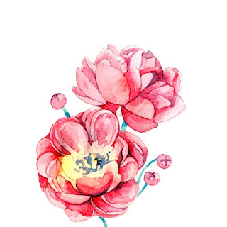 watercolour illustration, watercolour flower, watercolour painting, watercolour rose, watercolour flowers, watercolour illustrator, watercolour illustrator uk, watercolour illustrator london, freelance illustration, freelance illustrator, freelance artist, freelance illustrator uk, freelance illustrator london, i need an artist, looking for artist, i need an illustrator, flower painting illustrator, flower painting artist, beautiful flower painting, london art, detailed watercolour, illustrator floral, anastasiya levashova, anastasia levashova, event artist, live illustration, live illustration event, live illustration london, peony flower, peony watercolour, peony watercolour illustration,
