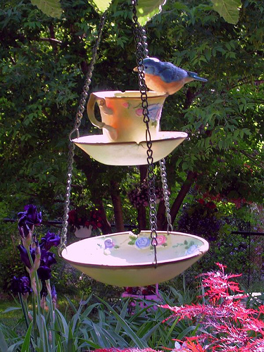 This creative upcycled teacup project is a functional bird feeder and bath - perfect for a backyard garden