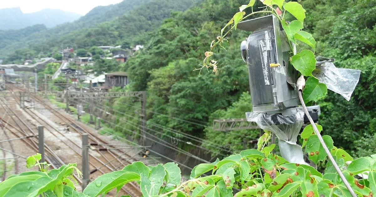 洪荒之愛?爬牆虎愛上brinno縮時攝影相機實錄-猴硐介壽橋縮時攝影工程