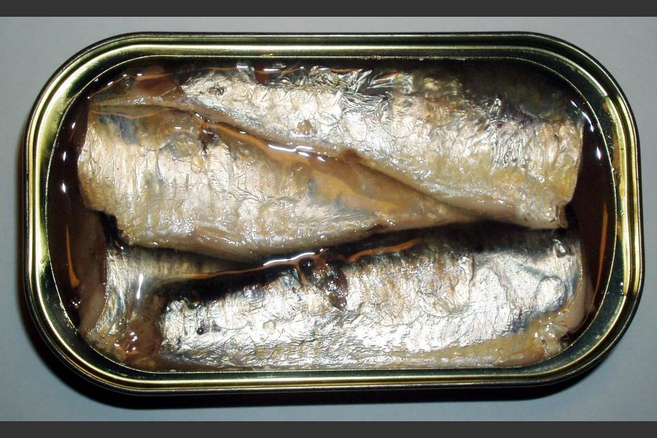Canned Sardines Manufacturers In Morocco