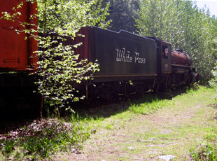 abandoned White Pass engine and box cars