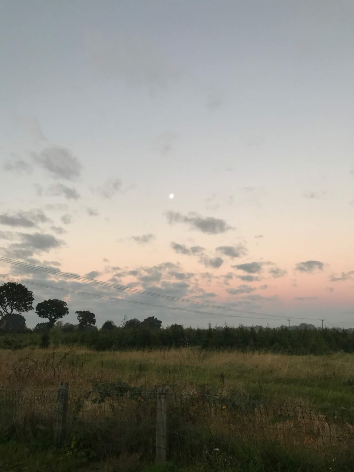 A sunrise over a field in Wythall