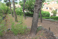 chalet en venta masia gaeta borriol jardin