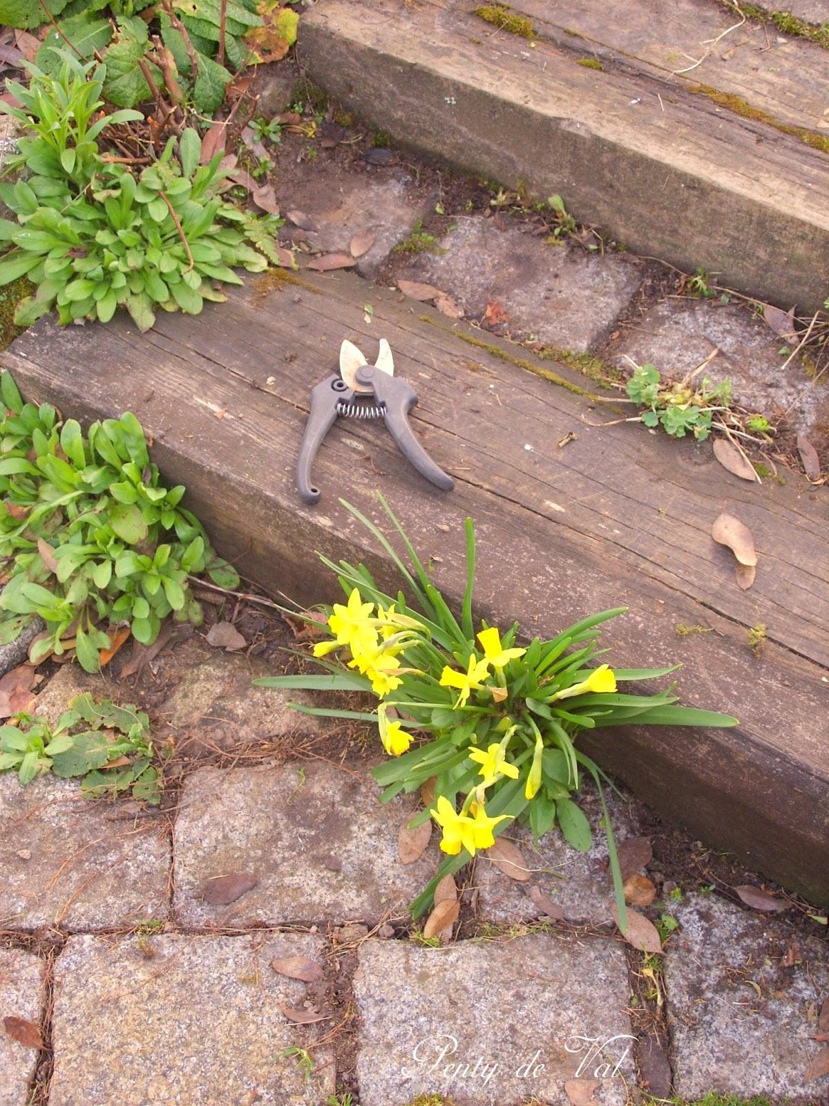 Penty de val je l 39 ai rencontr dans le jardin le for Nettoyage jardin printemps