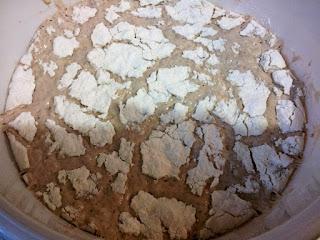 Au terme de ce temps, la pâte doit avoir presque triplé de volume.