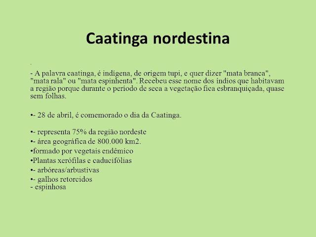 Caatinga Nordestina-2