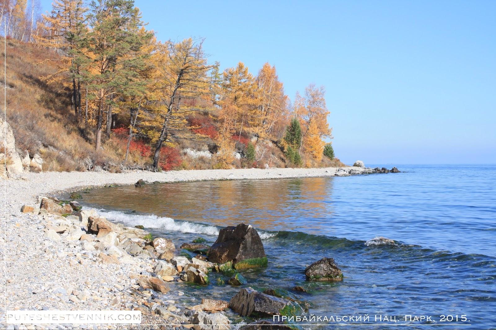 Волны Байкала и осенний лес
