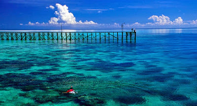 Kunjungi Kepulauan Derawan yang Penuh Keindahan