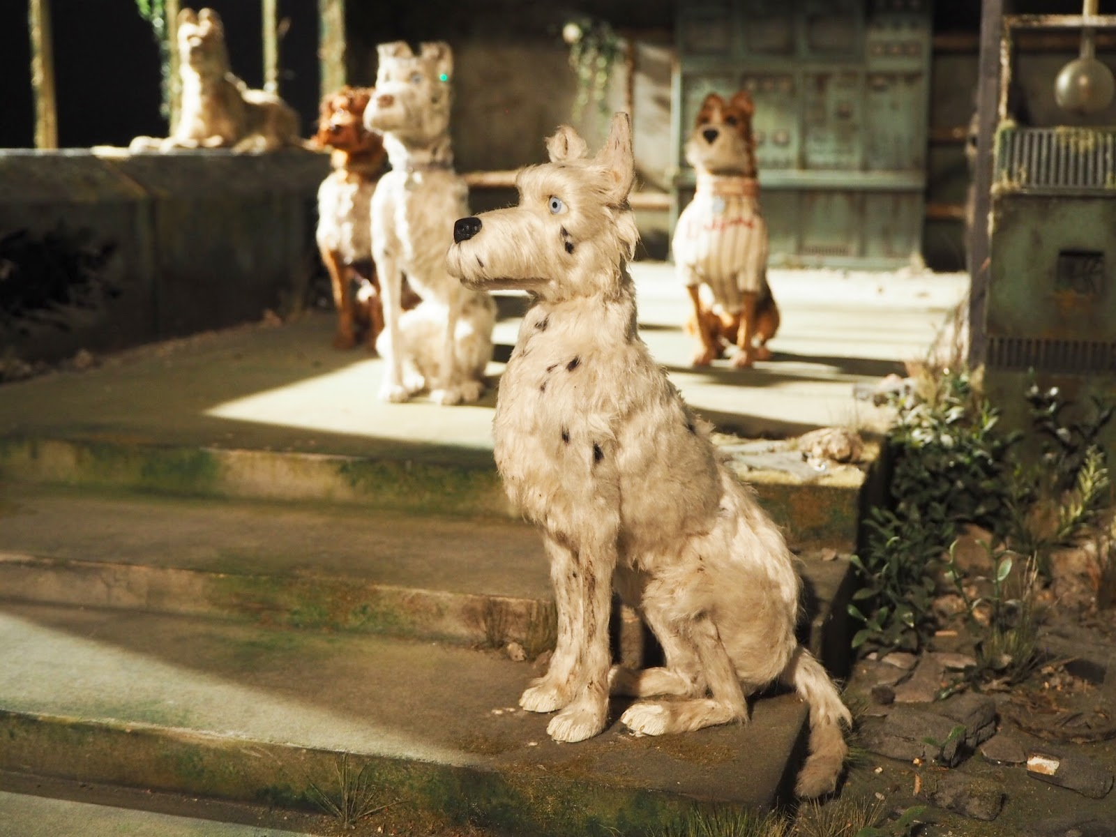 dog puppet on set of isle of dogs