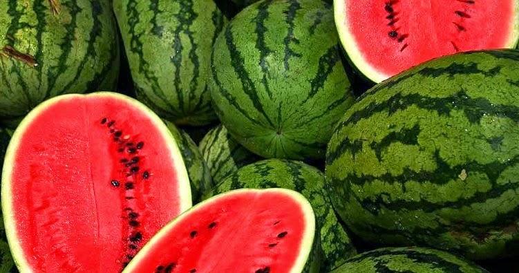 manfaat lapisan putih buah semangka segar