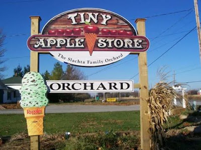 Cider Mills and Orchards in the Bay Area You'll Want to Visit This Fall