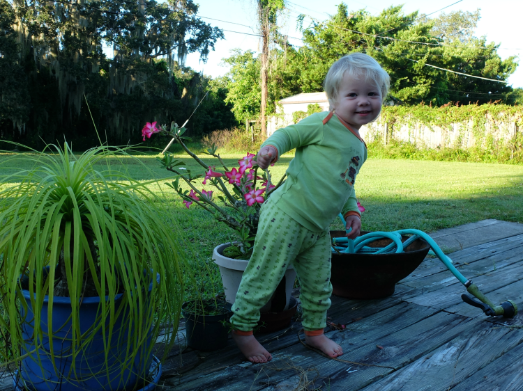Sweet Turtle Soup: Twenty Two Months Old