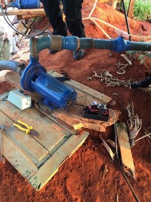Polícia descobre roça de maconha avaliada em R$ 5 milhões no município de Cafarnaum