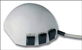 Mouse Tahun 1981