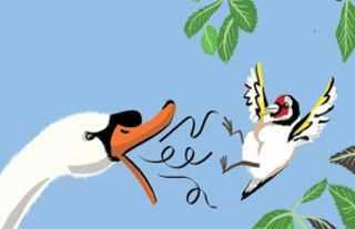 El jilgero y el cisne Adaptacion Tomas Iriarte