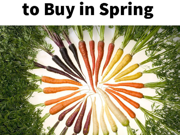 The Best - and Cheapest! - Produce to Buy in Spring