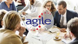 Agile Professional Certification Preparation (PMI-ACP)