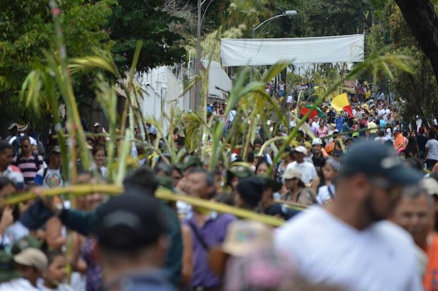 """Caracas mantiene viva la romería de """"Los palmeros de Chacao"""""""
